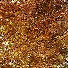 Autumn by AhaC