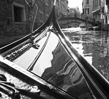 Venice Glide by Adrian Alford Photography