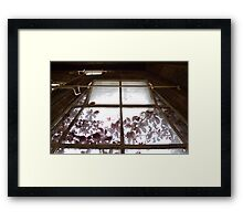 Autumn At The Natural History Museum Framed Print