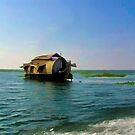 A houseboat moving placidly through a coastal lagoon in Alleppey by ashishagarwal74