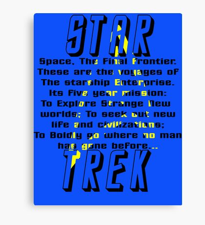 Space! The Final Frontier Canvas Print