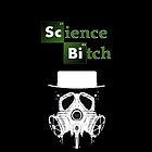 Breaking Bad- Science Bitch/Gas Mask by HeSSii