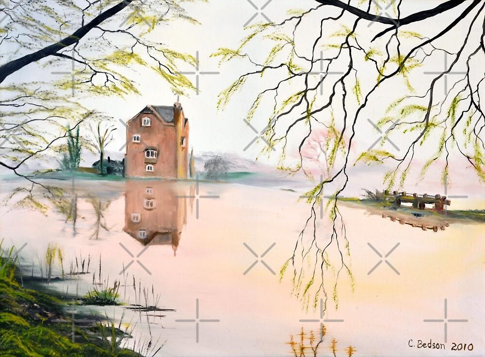 Fladbury Weir by Carol & Colin Bedson