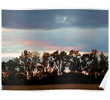 evening sky over cornfield Poster