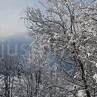 Snowy Slender Benders by justbmac