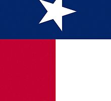 Smartphone Case - State Flag of Texas I by Mark Podger