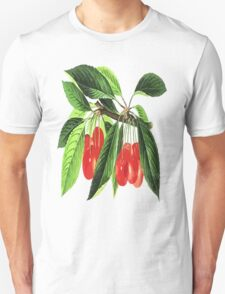 Red Cherries Vector on White Background Unisex T-Shirt