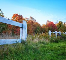 Autumn Fence by picsbytabitha