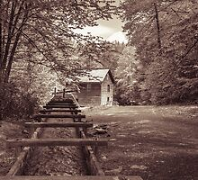 Mingus Mill, Smoky Mtns, TN by DonTX1