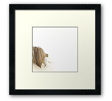 A short walk on the beach.... Framed Print
