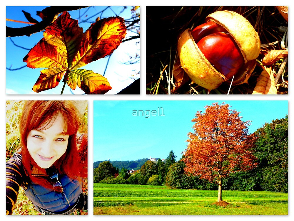 Conkers by ©The Creative  Minds