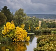 First Touch of Autumn by Yelena Rozov