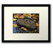 Streamside Journey With Heron Framed Print