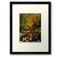 Autumn Triumph Framed Print