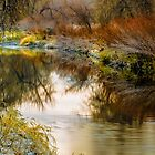 Autumn River Reflections by Photopa