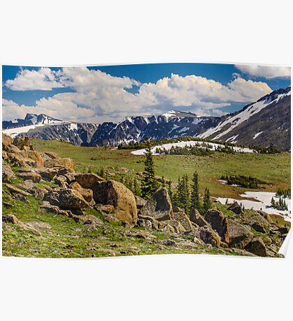 Rocky Mountains and Grassy Valley Poster