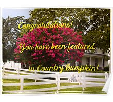 BANNER CHALLENGE FOR COUNTRY BUMPKIN Poster