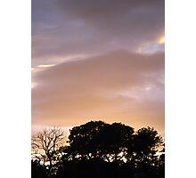 purple and orange Photographic Print