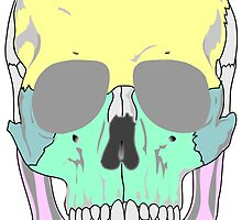 FUNKY SKULL (POP ART STYLE) by GayRiot