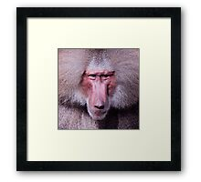Angry young man Framed Print