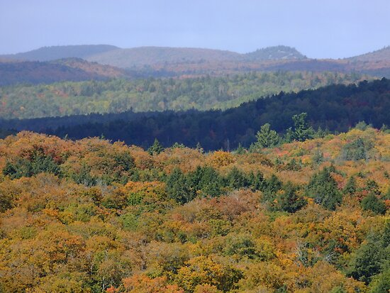 The View From Booths Rock Trail. Algonquin Park- Sept 23 2013. by Tracy Faught