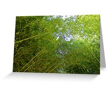 Let's Go To The Bamboo Greeting Card