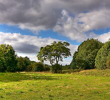 HAUGHTON VALE by MIKESCOTT