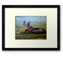 Pixie on the Prairie Framed Print