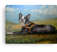 Pixie on the Prairie Canvas Print