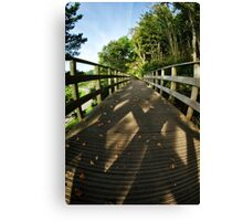 A Scattering Of Leaves Canvas Print