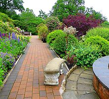 The Herbaceous Border by Fara