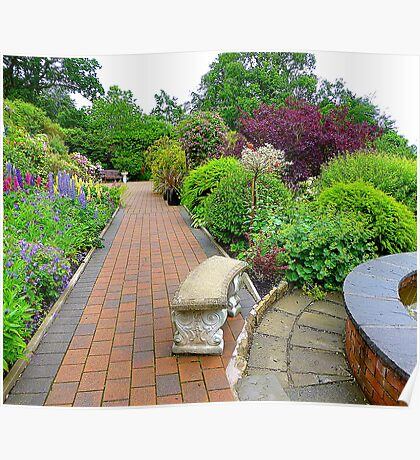 The Herbaceous Border Poster