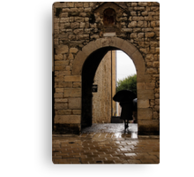 Rainy Day in Provence, France Canvas Print