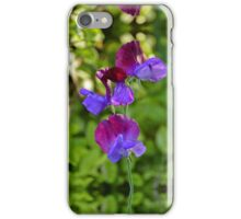Lathyrus Odoratus - Variegated iPhone Case/Skin
