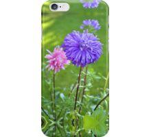 A Lilac Aster iPhone Case/Skin
