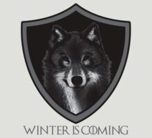 Winter is Coming by Keelin  Small