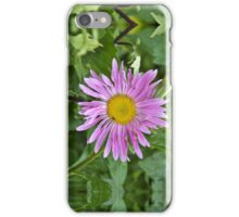 Aster Beauty iPhone Case/Skin