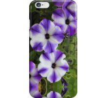 Decorative Petunia in Purple and White iPhone Case/Skin