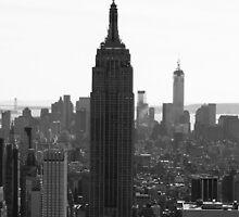The Empire State Building by Dmitry Klevansky