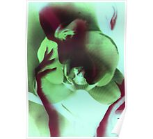 6499vgi Abstract Beauty Poster