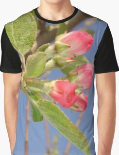 Spring Apple Blossom Flowers  Graphic T-Shirt