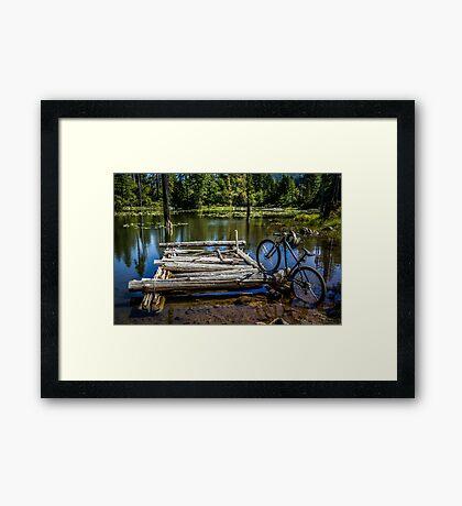 Mountain Biking can take you anywhere! Framed Print
