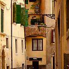 Alleyway in Verona by Rae Tucker