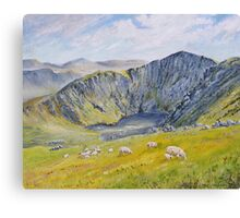 Springtime on Cader Idris. Canvas Print