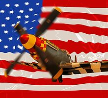 Mustang P-51D by mhfore