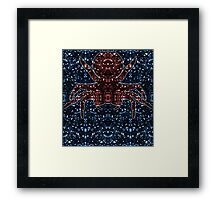 Kaleidoscopic Funnel Web - 01  Framed Print