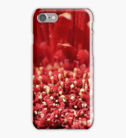 Polin Party iPhone Case/Skin