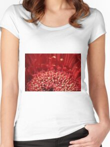 Polin Party Women's Fitted Scoop T-Shirt