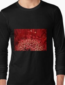 Polin Party Long Sleeve T-Shirt