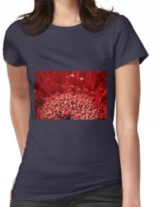 Polin Party Womens Fitted T-Shirt